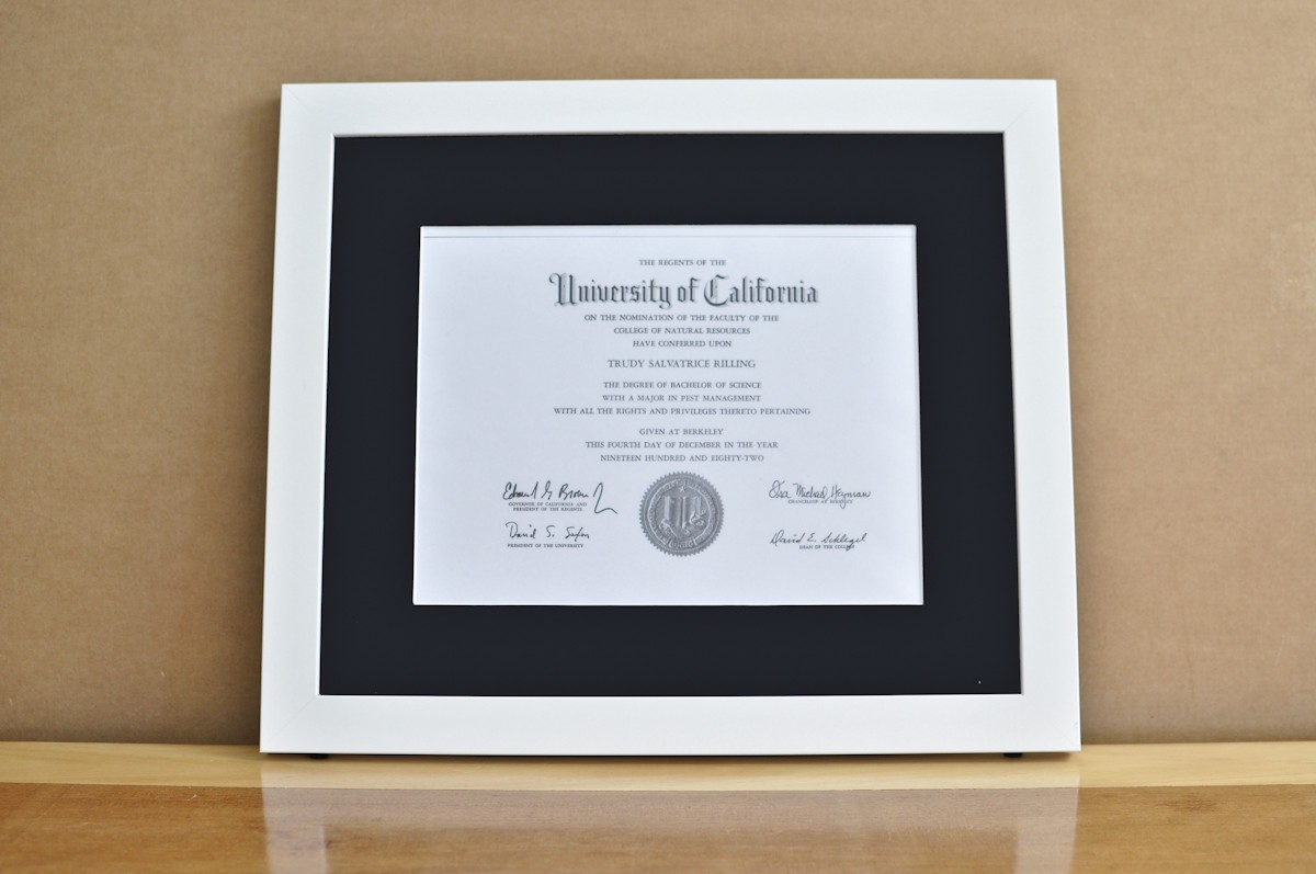 why are diploma frames so expensive hans gill medium