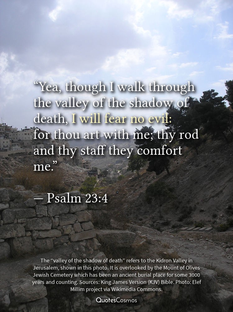 Yea Though I Walk Through The Valley Of The Shadow Of Death I Will Extraordinary Does Jesus Fear Death Quotes