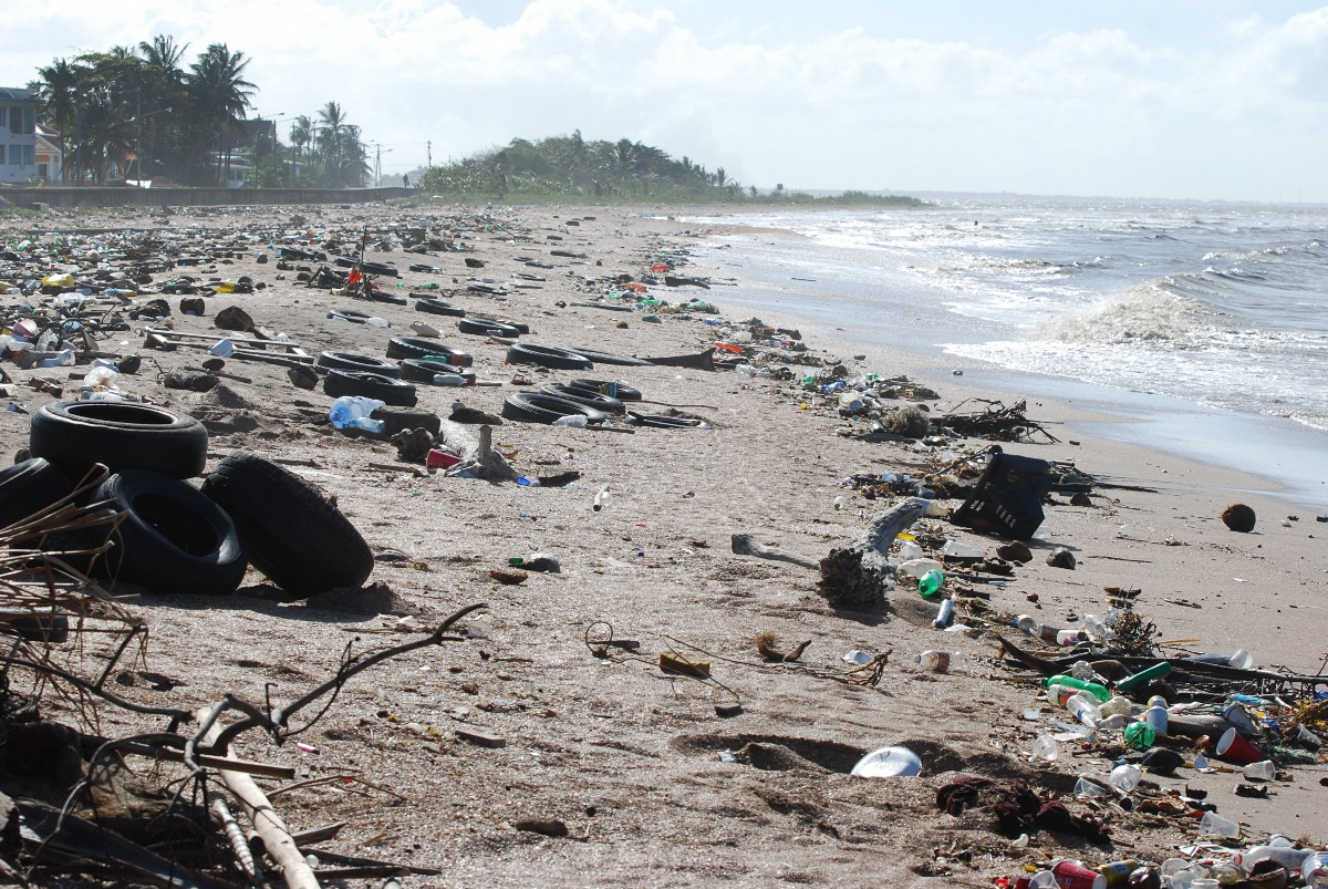 damage to the environment as a consequence of worldwide improvement in the standard of living I also think that improvement of standard of living can be hazardous for  damage to the environment is an inevitable consequence of worldwide improvements in the.