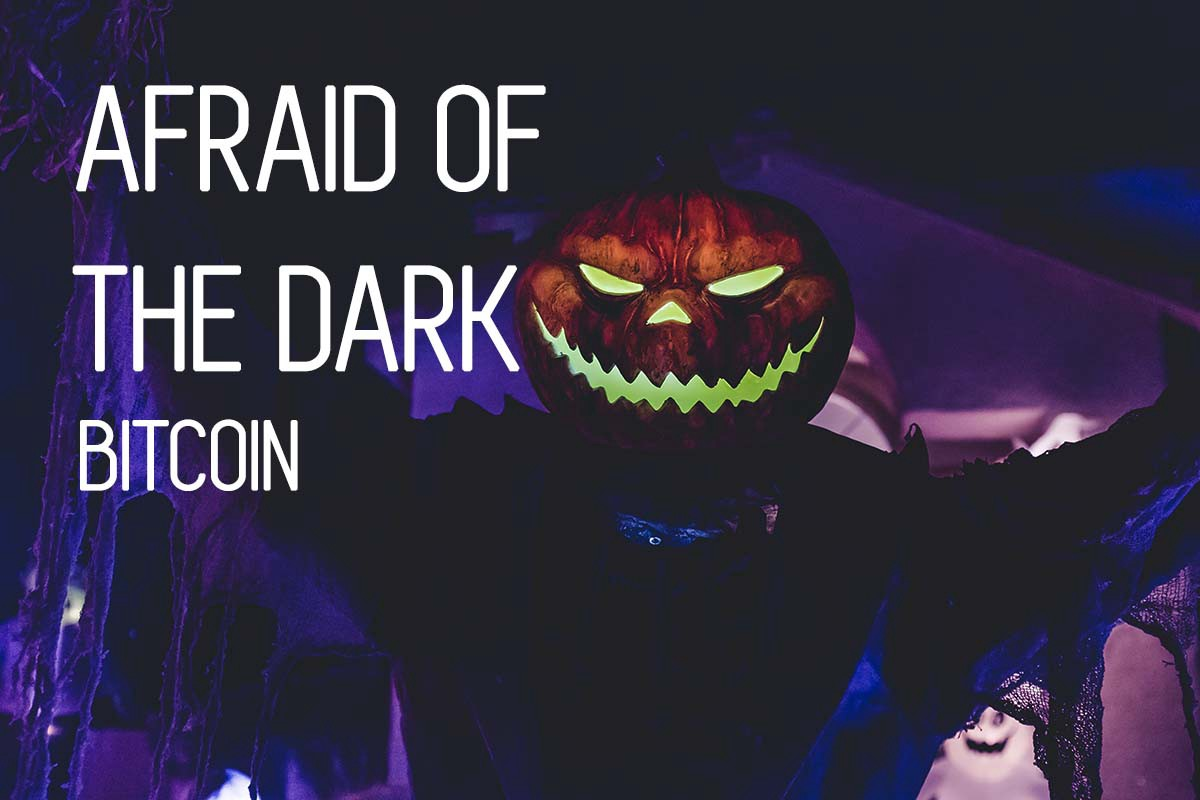 www bitcoin.it%2Fpublic  Afraid of the Dark: How understanding Bitcoin changes public opinion ...