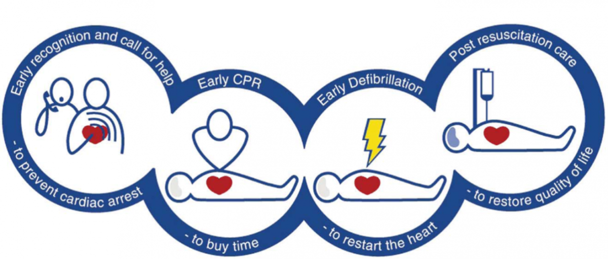 The Blockchain Of Life Cpr Pulse Medic Medium