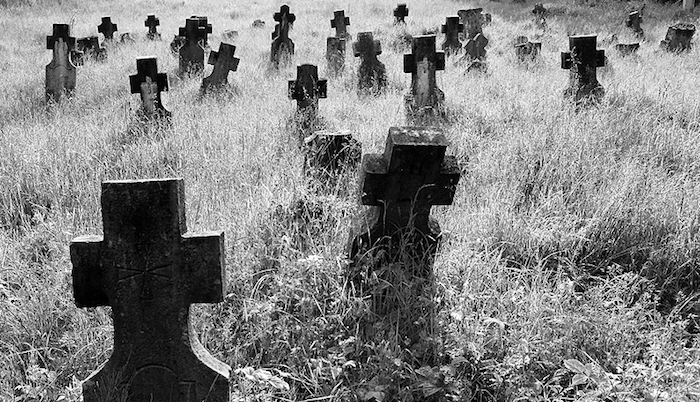 The Business of Screenwriting: The Birth, Life and Death of