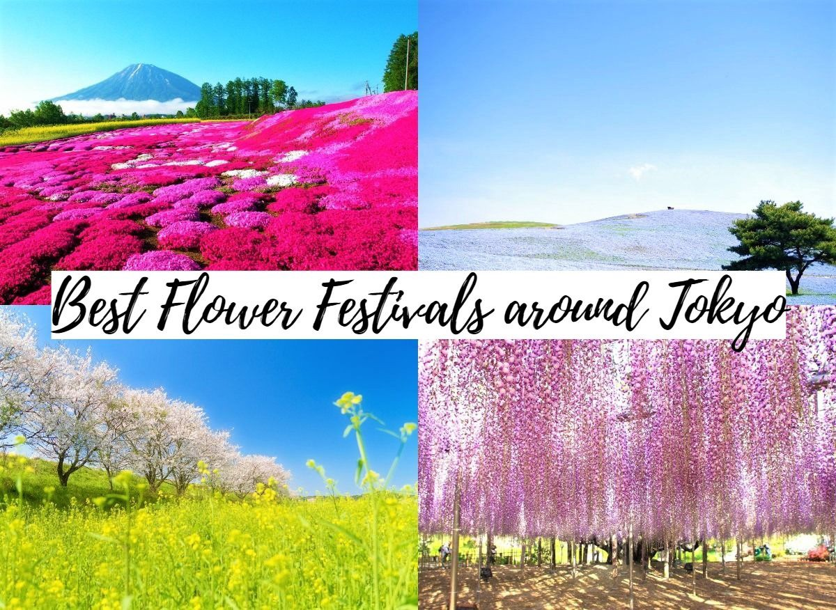 7 Must Visit Flower Festivals Around Tokyo In Spring