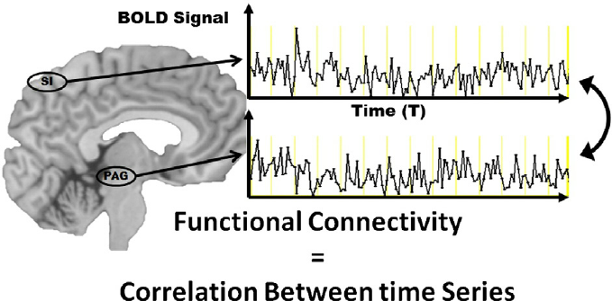 Graph showing how functional connectivity equal correlation between time series