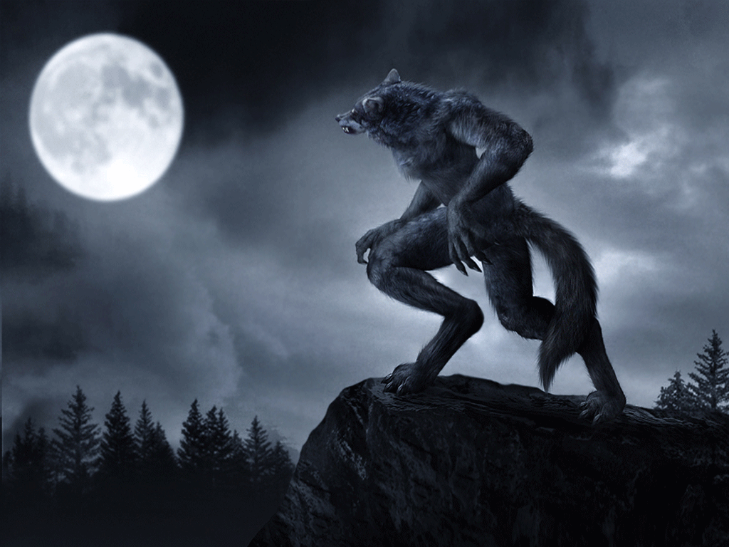 3 signs your roommate is definitely a werewolf nyu local