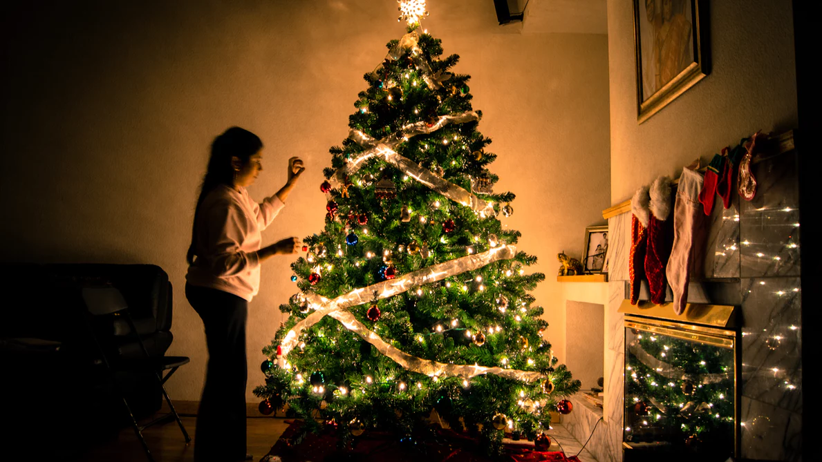 Christmas tree prices are on the rise – Grand
