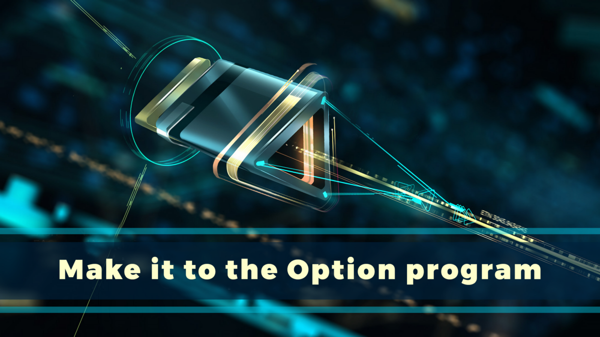 How to participate in Genesis Vision Options program?