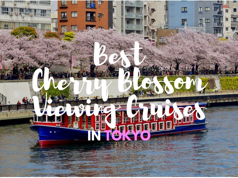 6 Best Cherry Blossom Viewing Cruises In Tokyo 2019