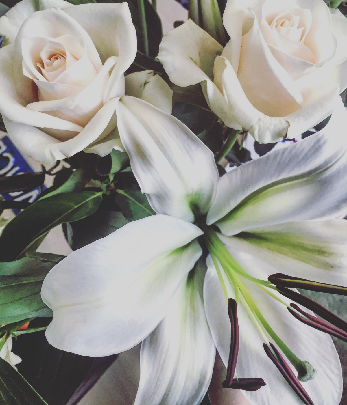 Lilies Roses I Love You Shoot First Medium