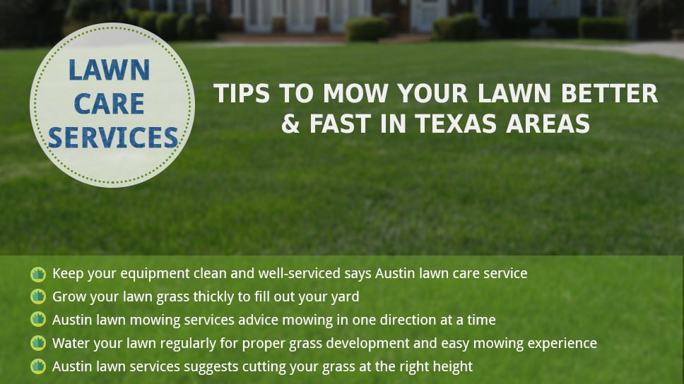 How to make your grass green in texas