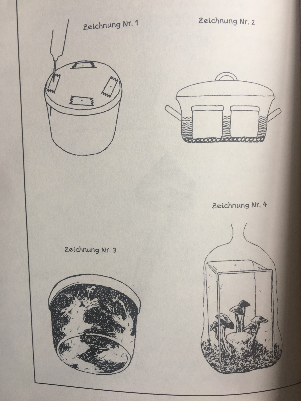 How To Grow Your Own Psychedelic Mushrooms Ayahuasca Community Diagram Of The Germinating Process Last Two Drawingsin Box Make Sure That Temperature Wont Exceed 30 Degree Celsius As Soon Shrooms Start Get Wrinkled Remove Vermikulit