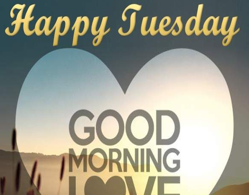 20 best happy tuesday morning messages erica gray medium rh medium com tuesday morning near me tuesday morning the pogues