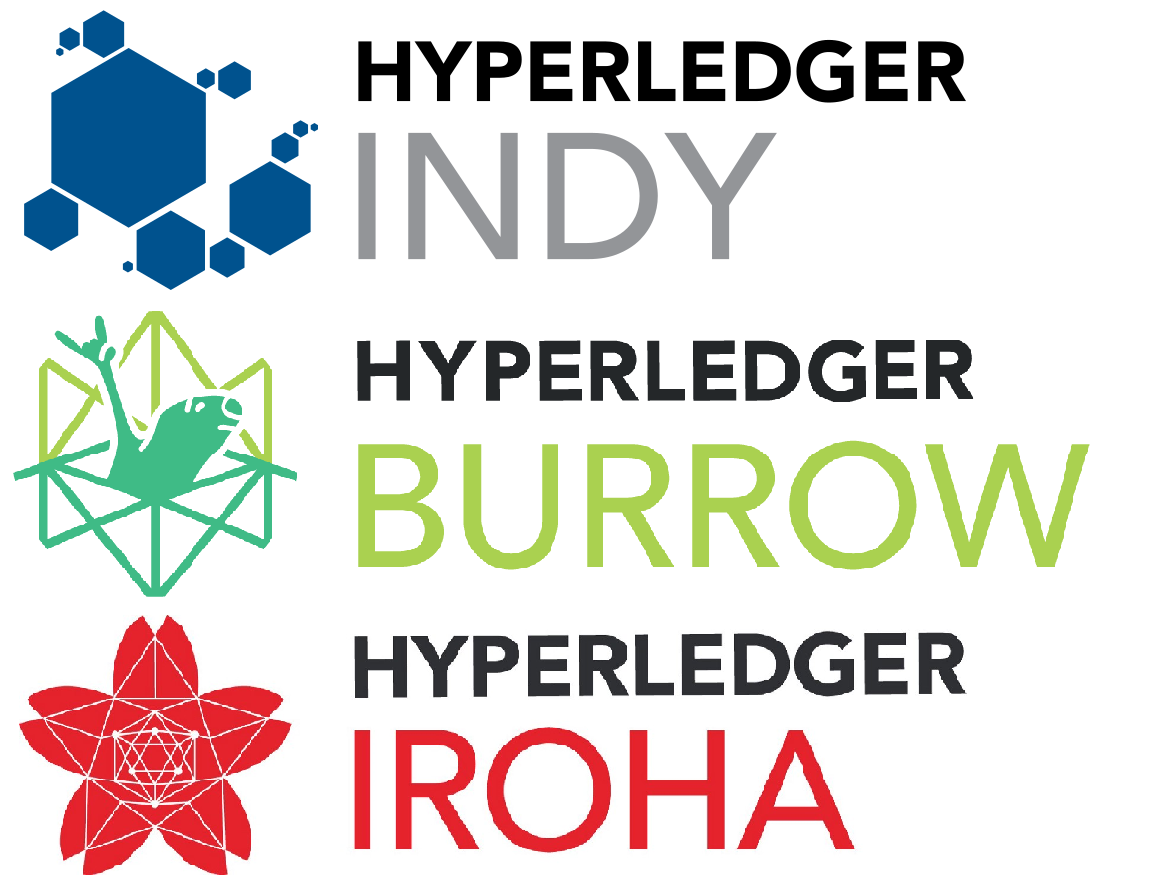WTF is Hyperledger ?
