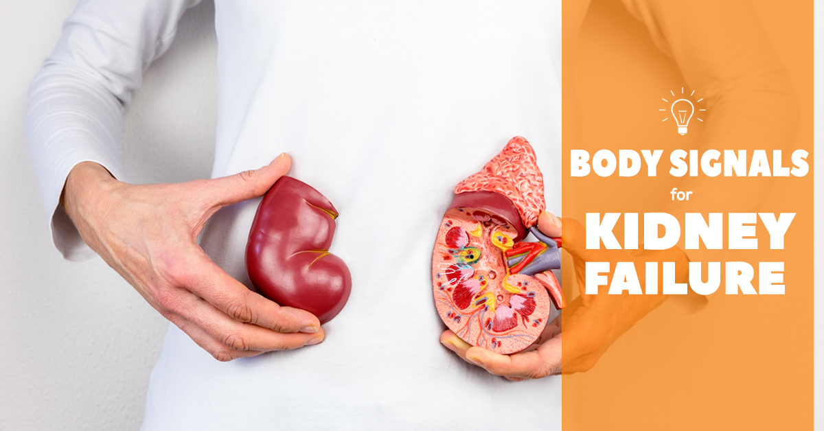 If Your Kidney Is In Risk Your Body Can Offer You These 7 Signs