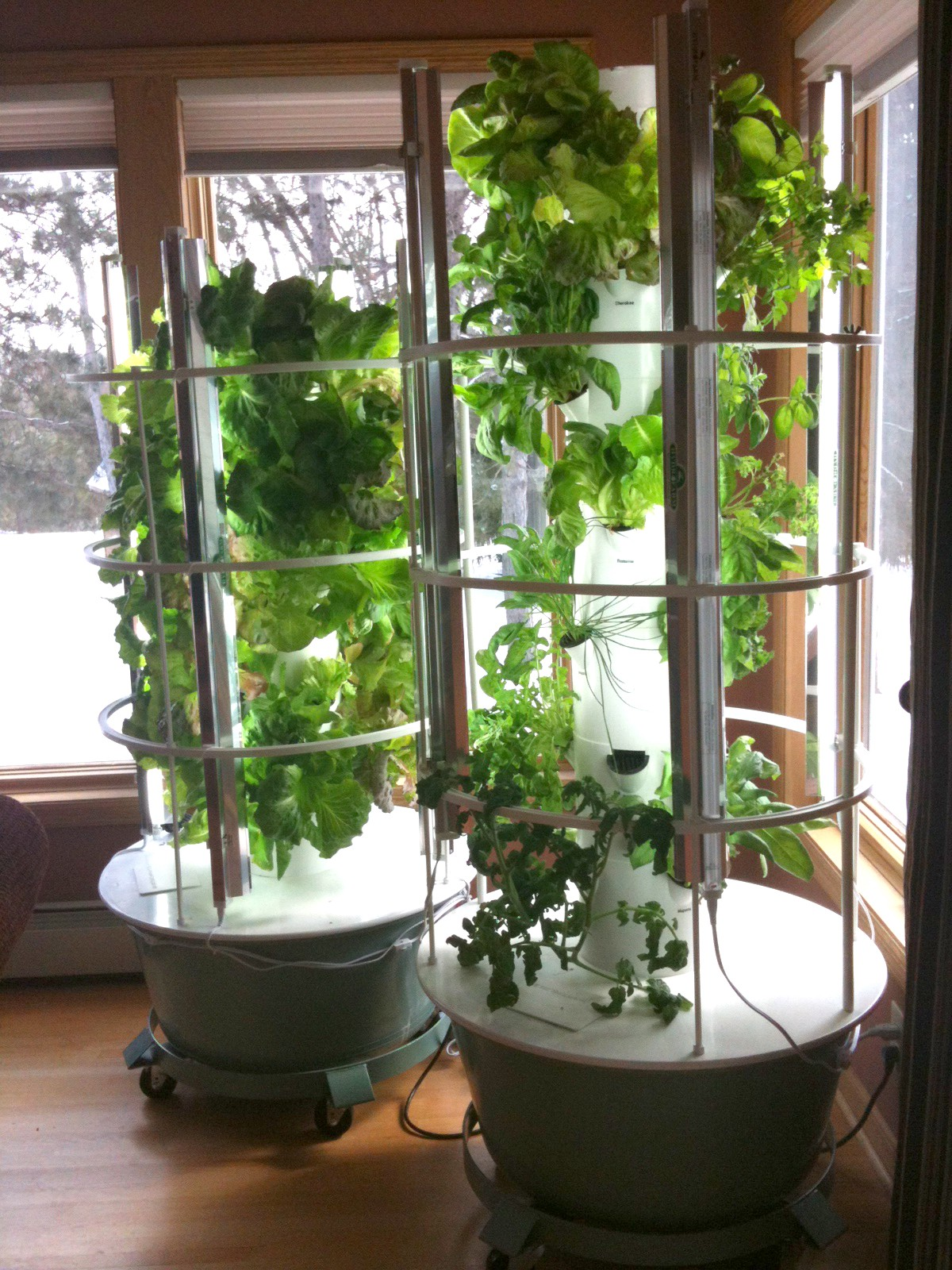 Personal Indoor Farming Competitive Landscape Gabe