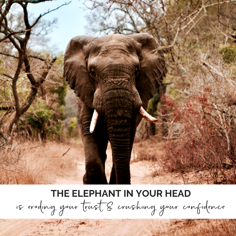 2ada05a8e807c The Elephant in Your Head is Eroding Your Trust and Crushing Your Confidence