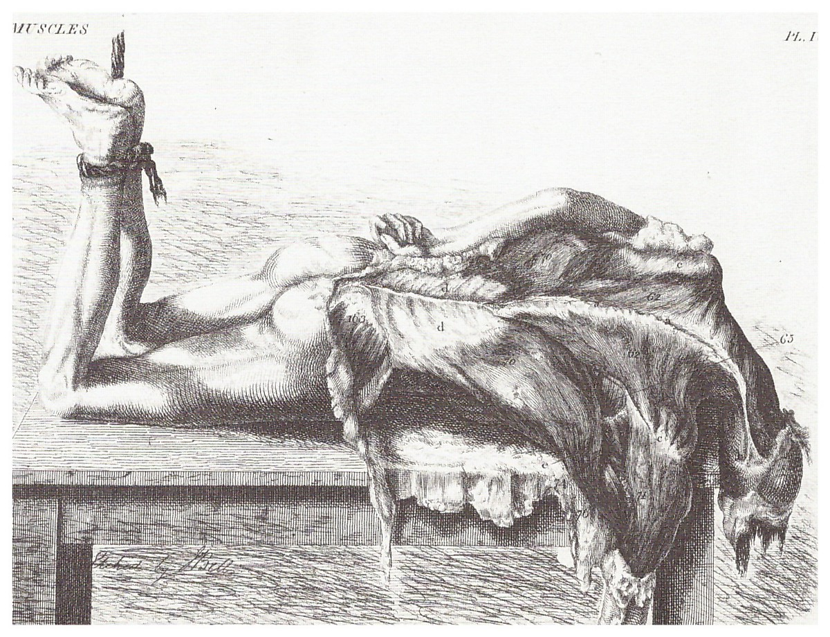 oral sex in the 18th century