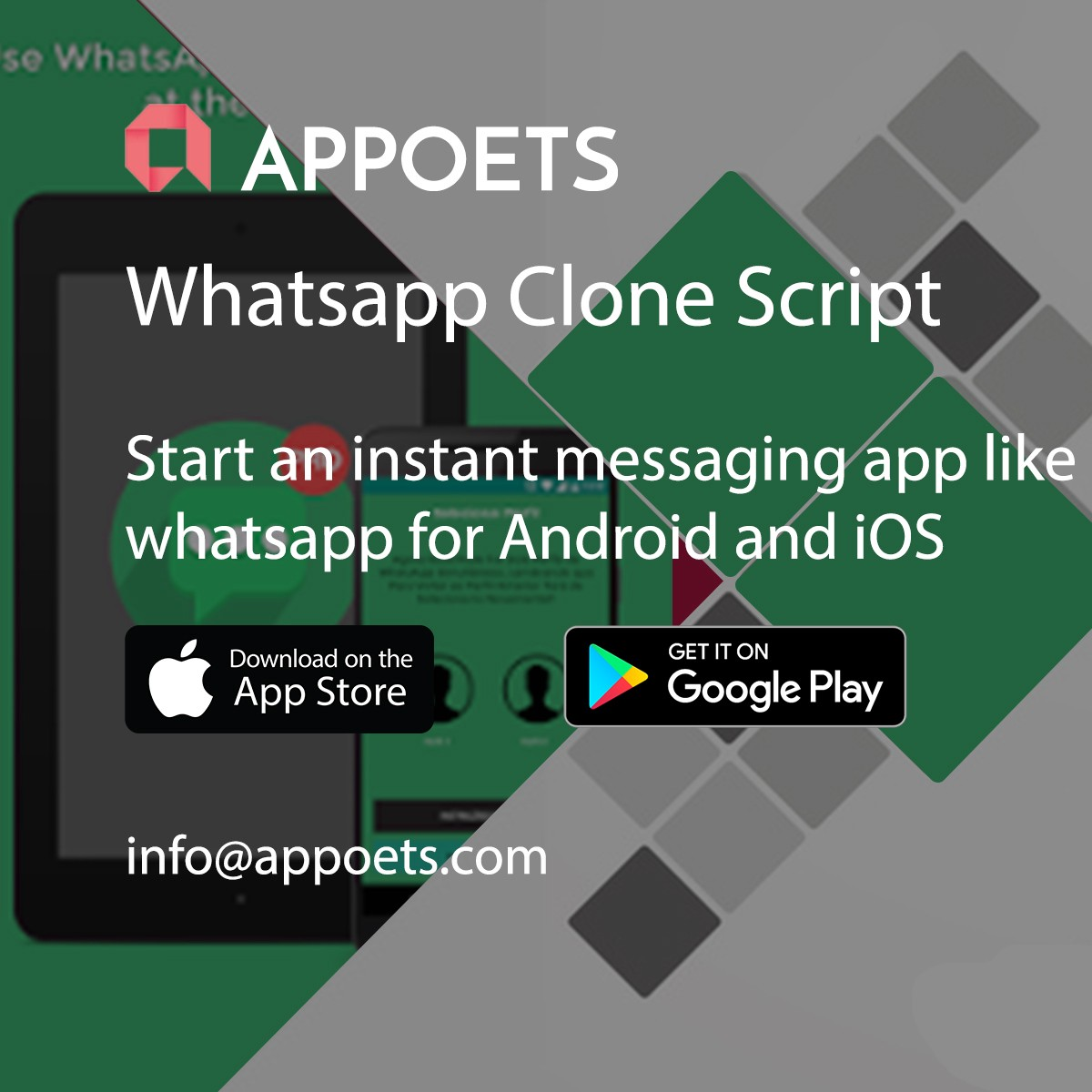 Get the Whatsapp clone before anyone else does  – Jack Mile