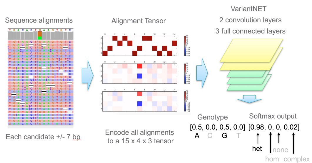 simple convolutional neural network for genomic variant