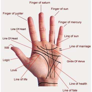 Image result for japan palm reading