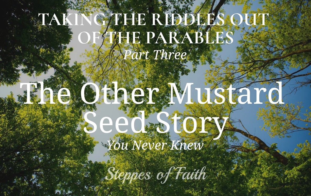 Taking The Riddles Out Of The Parables Part 3 The Other Mustard