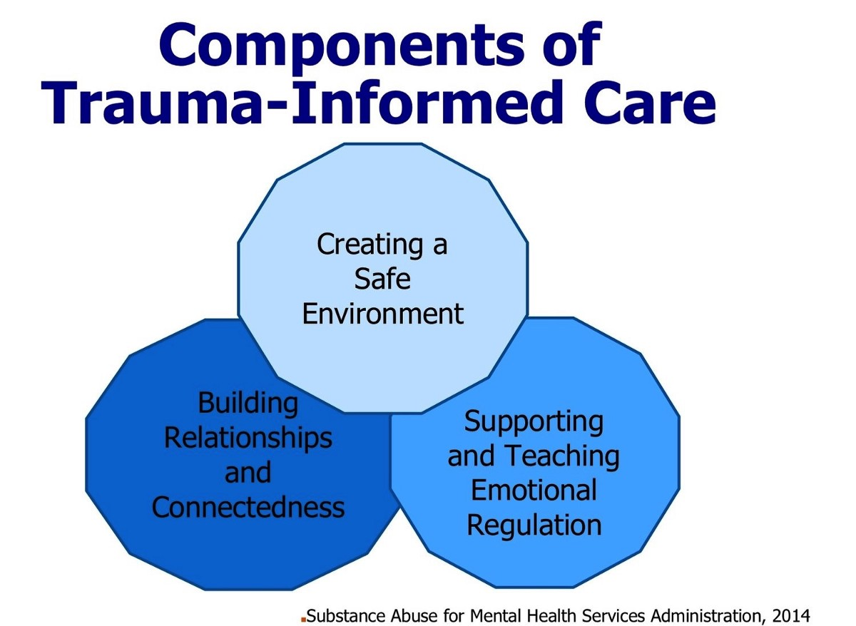 Embedding Trauma Informed Practices Within Existing School