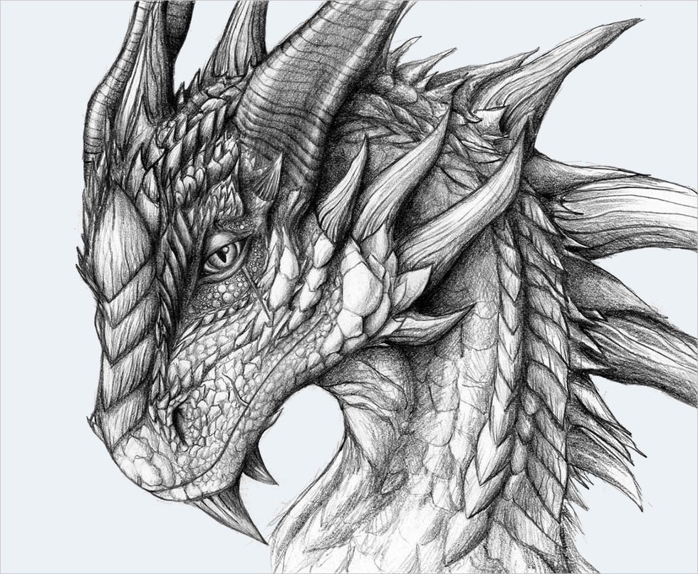 Here are a few thoughts that can enable you to get parts of creatures that are genuine to make a practical dragon drawing