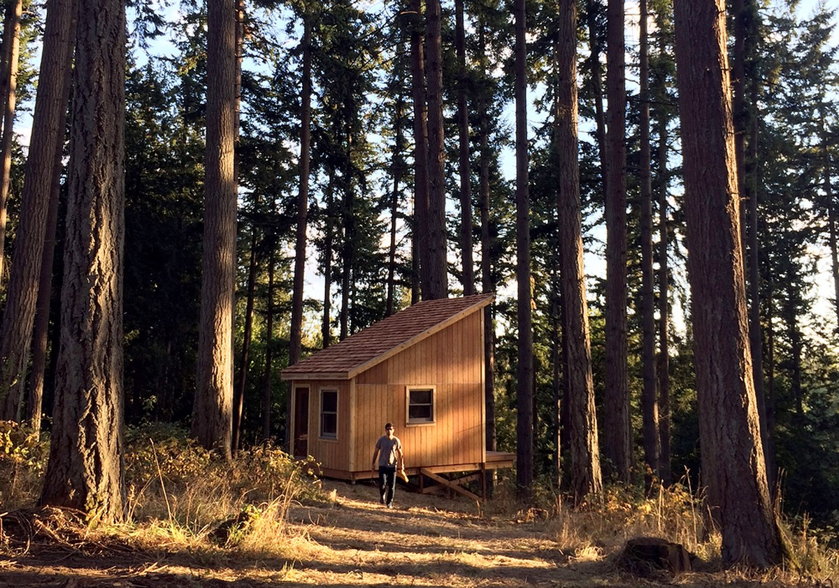 Cabin Fever. What your brain gets out of building in the forest   %name