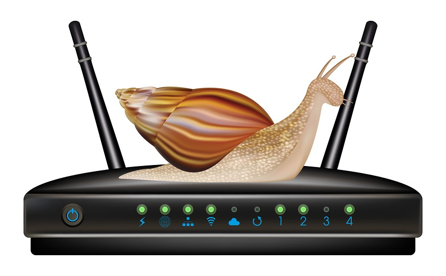 Don T Let Your Internet Slow To A Snail S Pace Join The