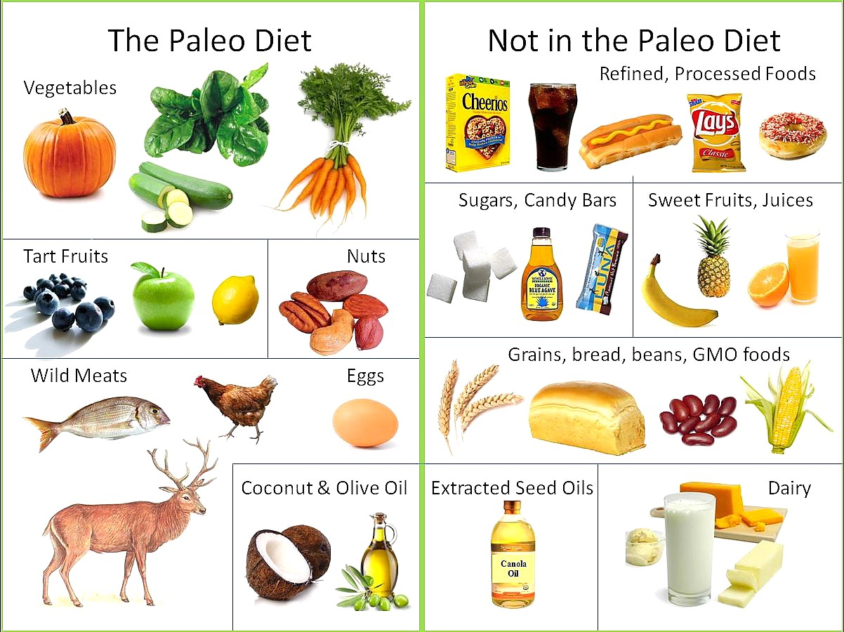 What Foods Can I Eat on Paleo pictures