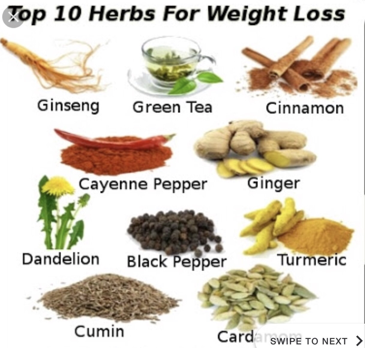 10 Common Weight Loss Herbs And Spices Today Science Medium