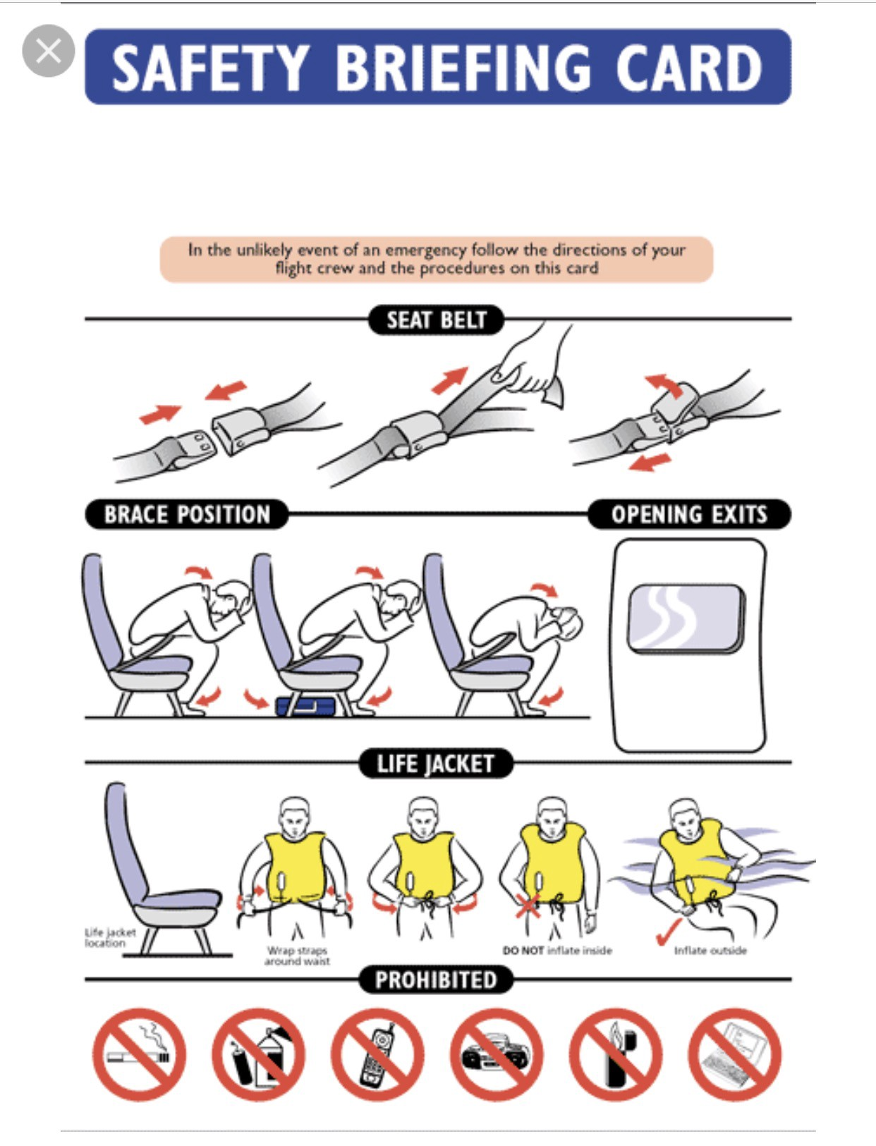 Brace yourself in defense of hysterical flight attendants solutioingenieria Images