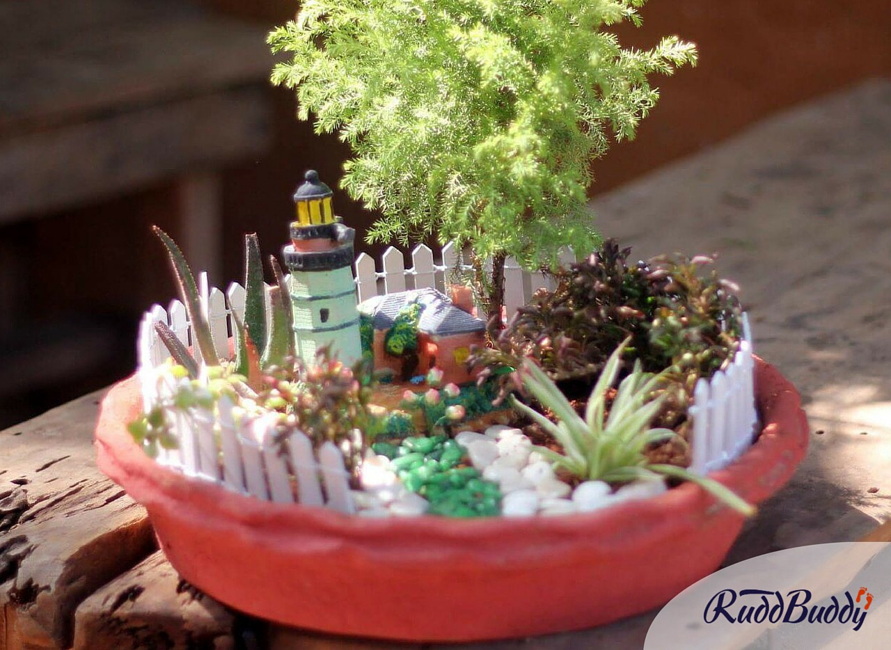 Miniature Gardens: New Gifting Trend In The City U2013 Trouvaille By RuddBuddy  U2013 Medium