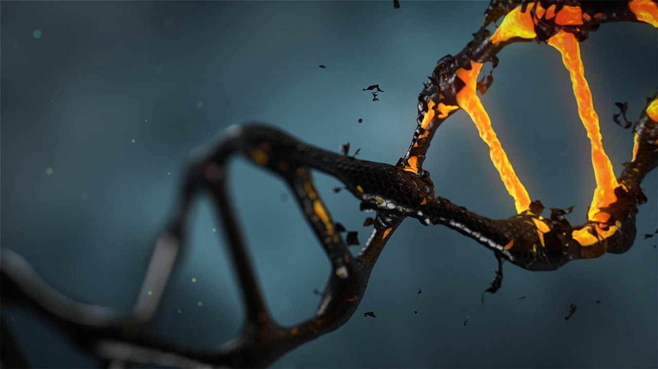 the rules for genetic modification james rhule medium