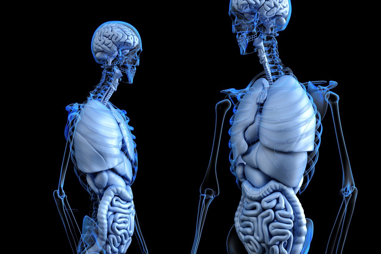 Know Your Body When You Talk With Doctors Rebecca Graf Medium