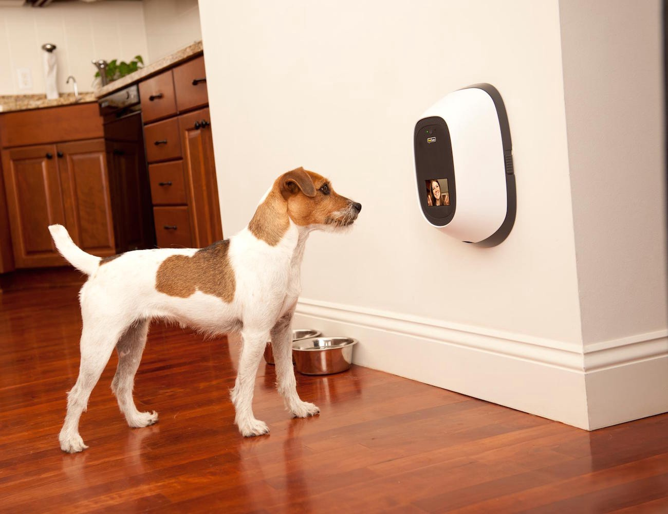 Smart Home Gadgets 12 smart home gadgets to keep you safe and secure – gadget flow