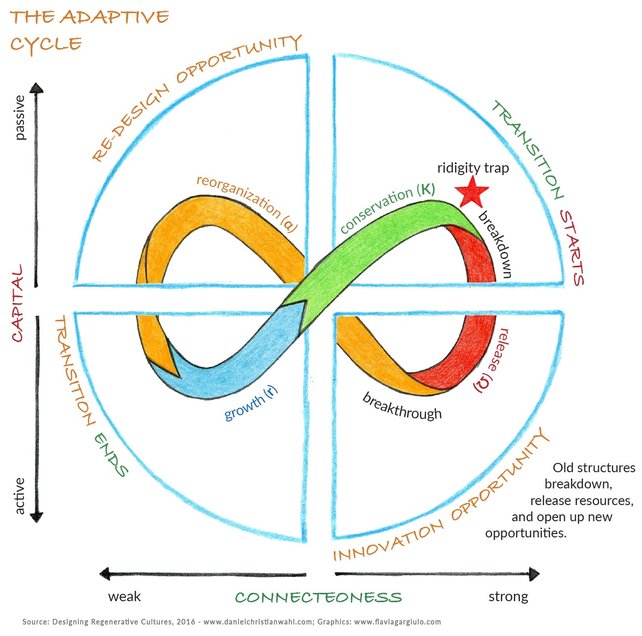 The Adaptive Cycle As A Dynamic Map For Resilience Thinking
