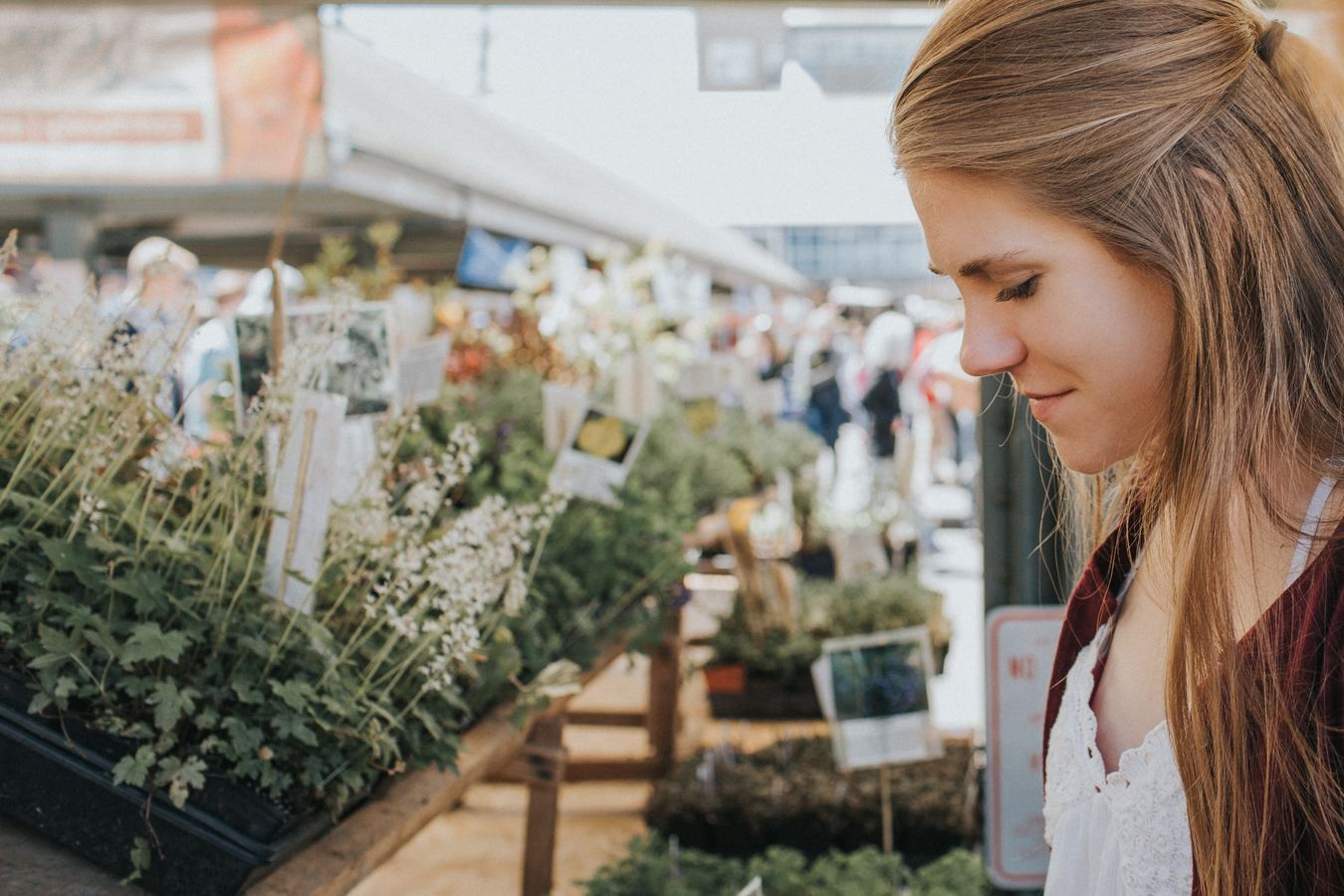How Farmers Markets Can Use Online Marketplace Technology