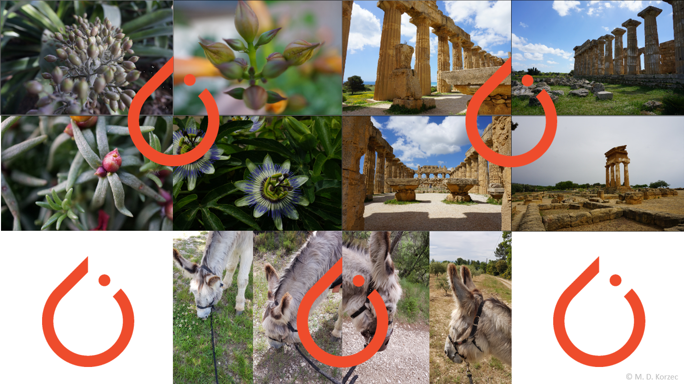 Recommending Similar Images Using PyTorch