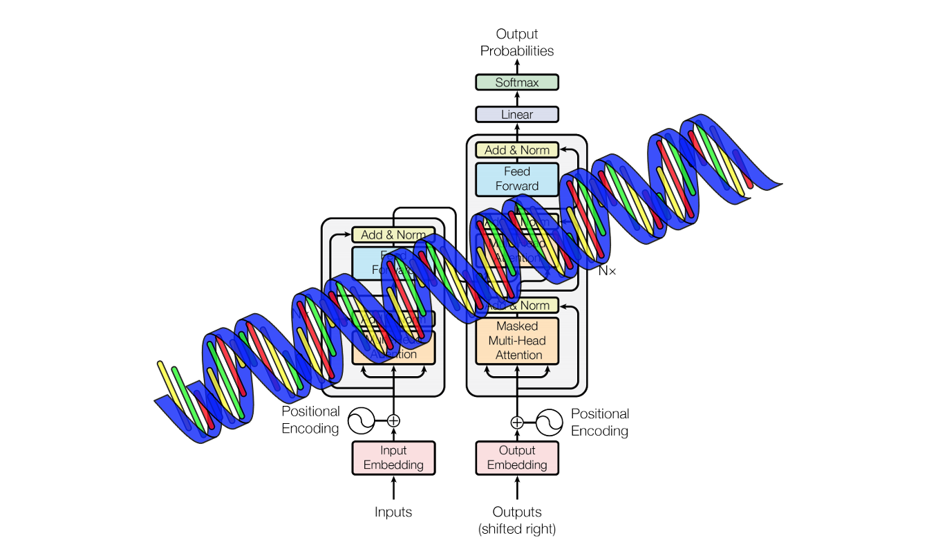 Applying Linearly Scalable Transformers to Model Longer Protein Sequences