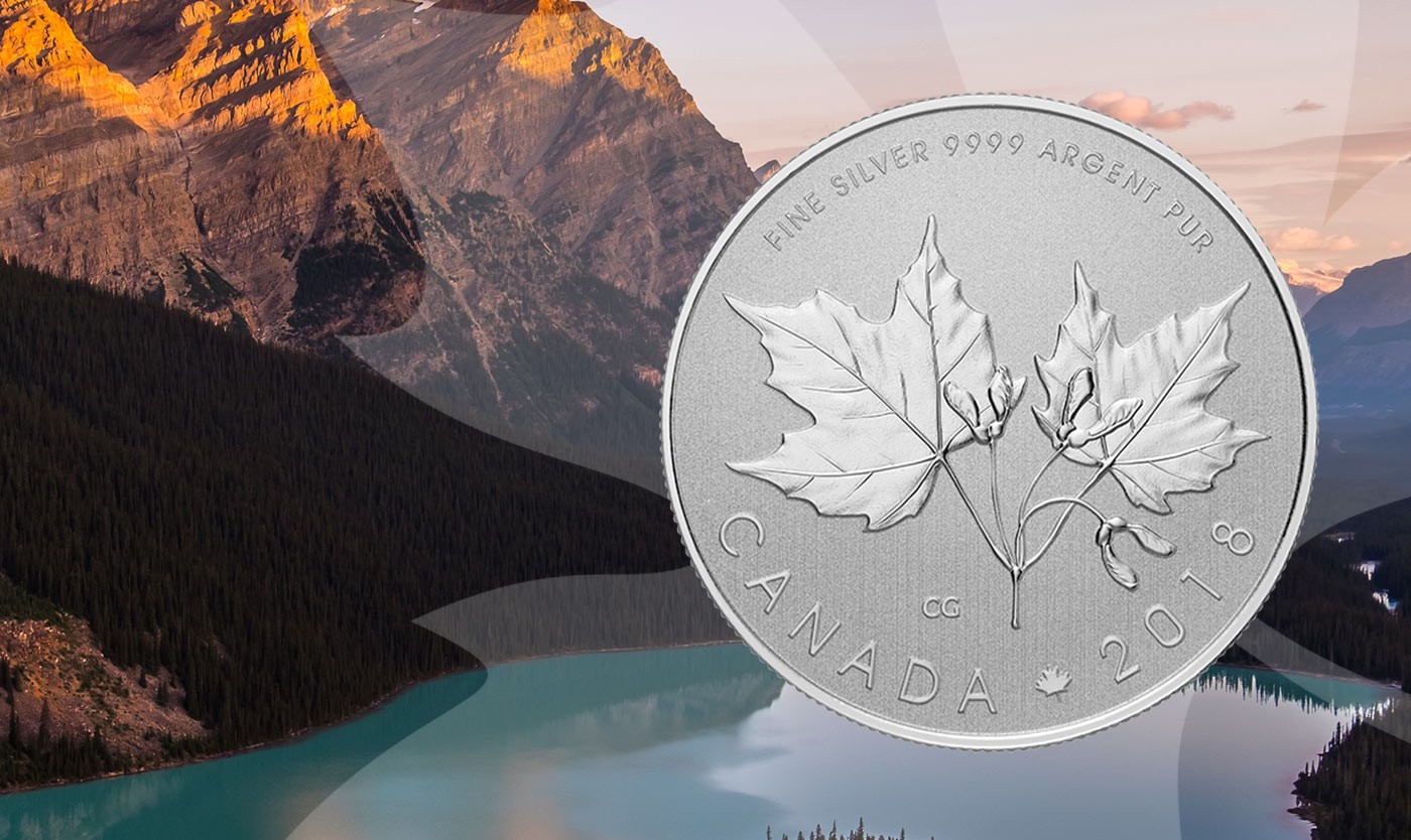 What Is It About The Maple Leaf Anyway Royal Canadian Mint Medium