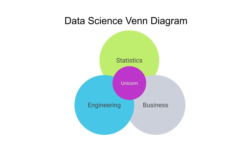 Becoming a Level 3 0 Data Scientist - European Leadership