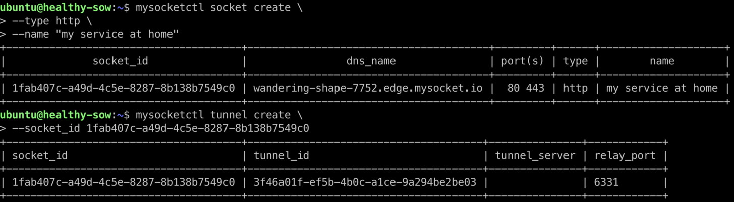 Static DNS names for your mysocket.io services (and a new gif service)
