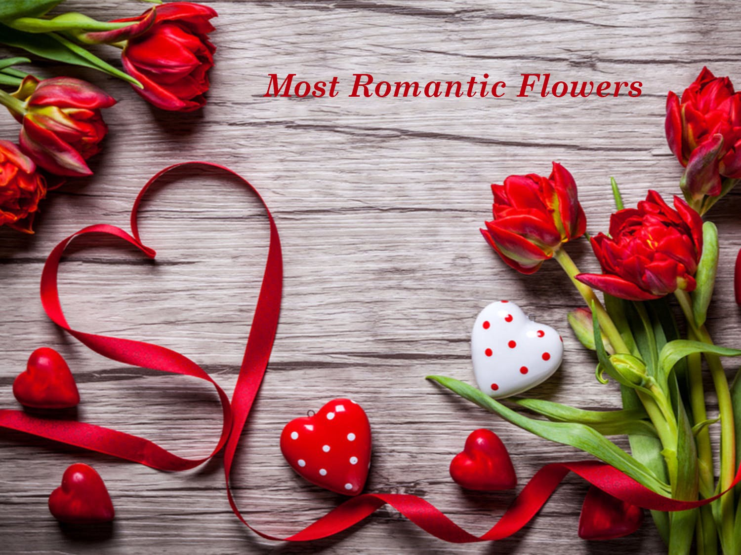 Which Are The Most Romantic Flowers For Loved Ones
