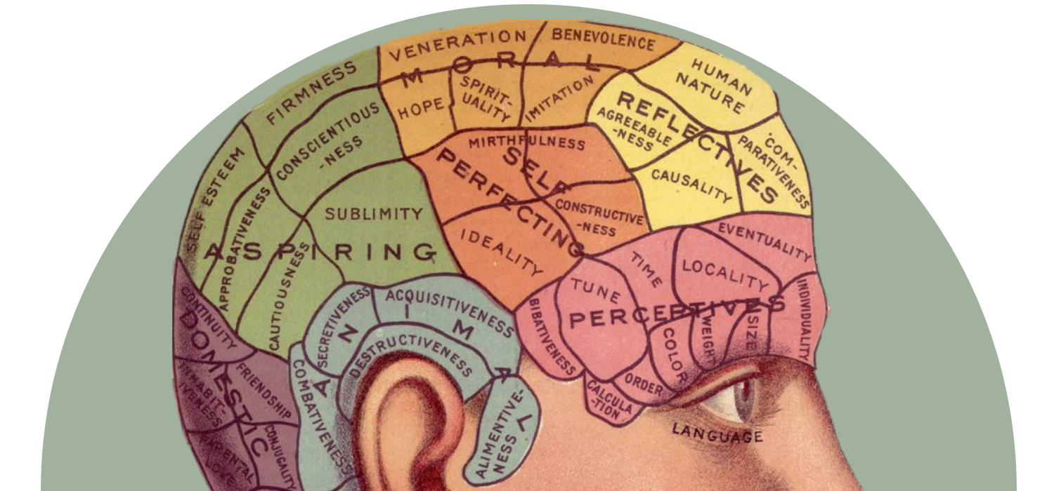 Brain Hacks for Supersonic Learning – How We Get To Next
