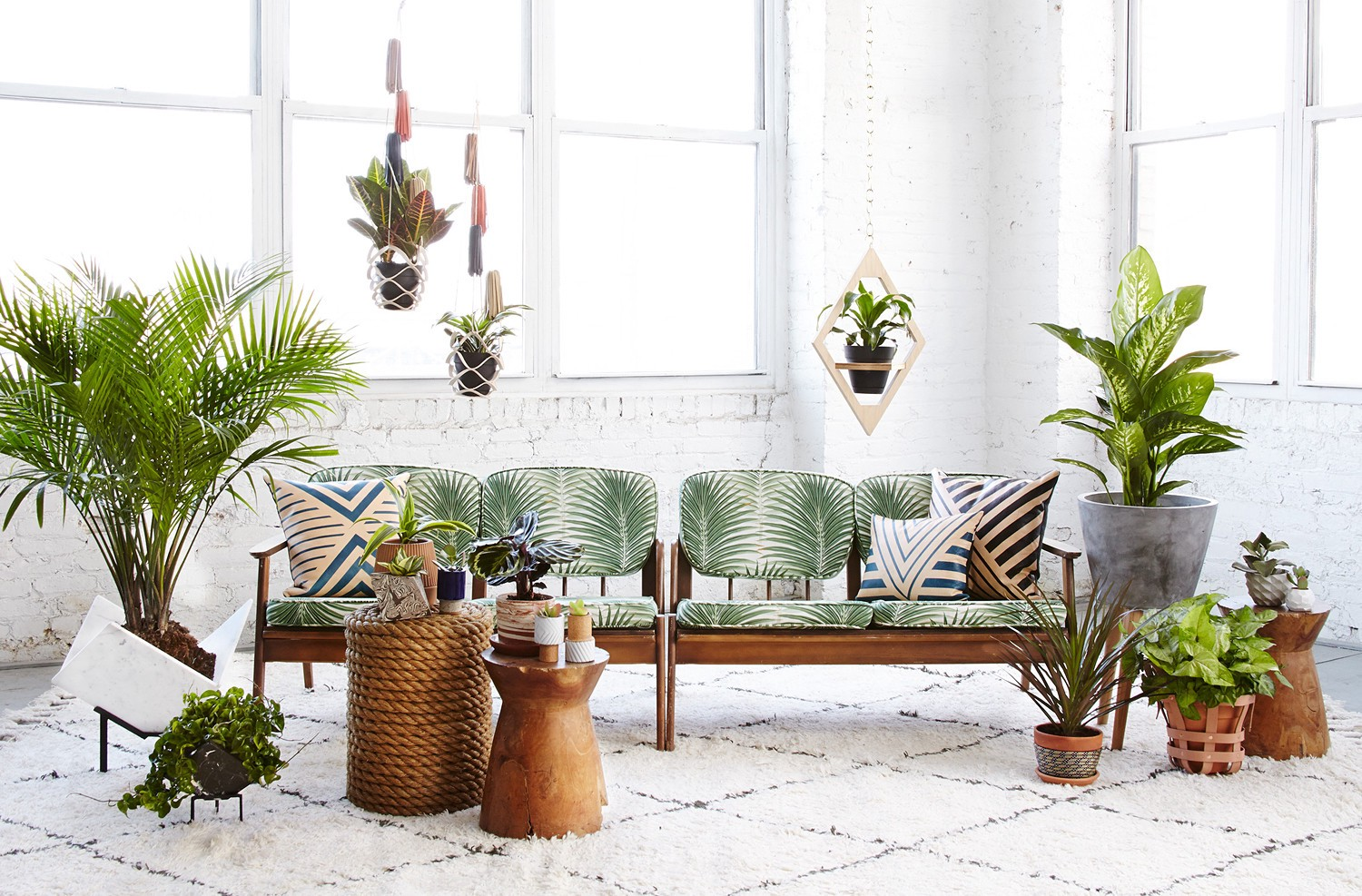 How To Use Plants In The Interior Basics Of Design Medium