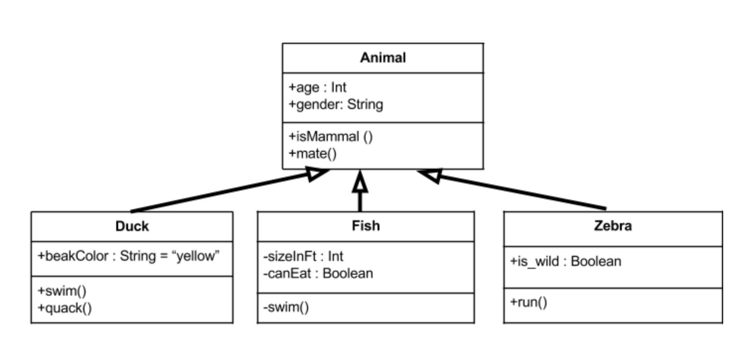 Uml class diagrams tutorial step by step salma medium above we have an animal parent class with all public member fields you can see the arrows originating from the duck fish and zebra child classes which ccuart