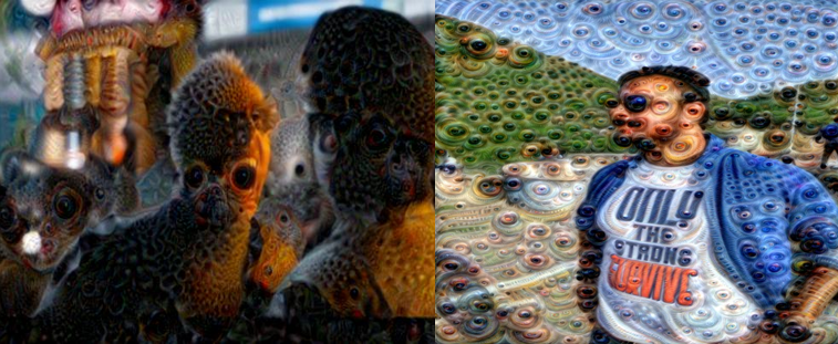 Deep Dream with TensorFlow: A Practical guide to build your first Deep Dream Experience