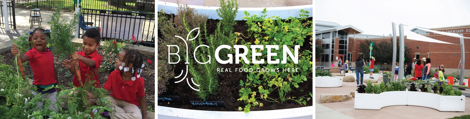 Why I Want to Bring #RealFood to 100,000 Schools Across America