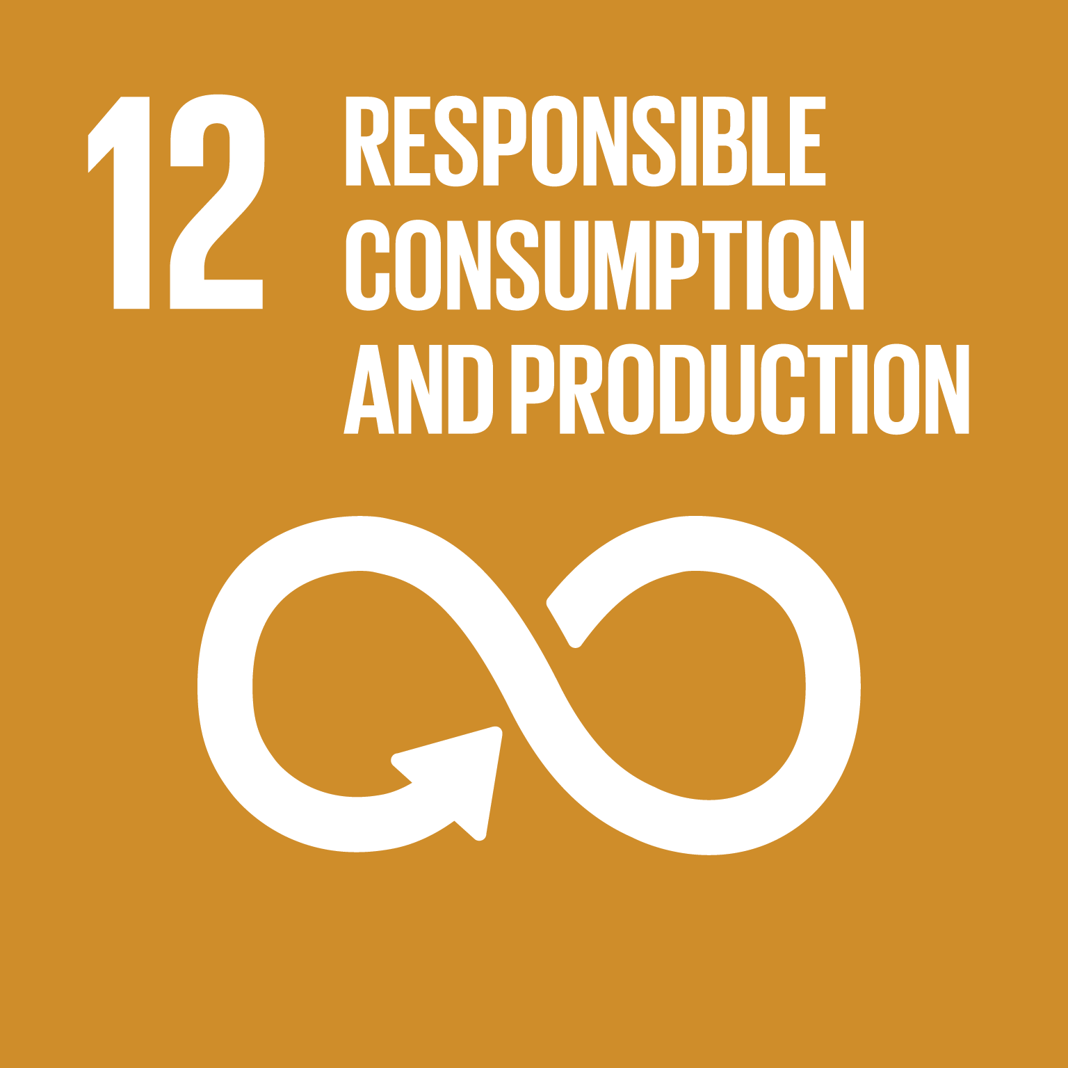Image result for sdg 12